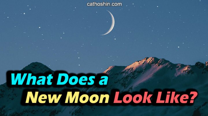 What Does a New Moon Look Like (Basic Guide for Beginners)